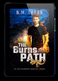The Burns Path | Urban Fantasy Novel