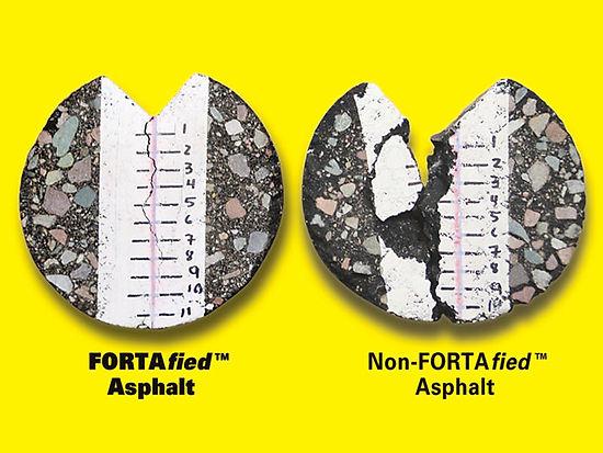 Forta-PR-photo1.jpg