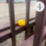 Easter Egg Hunt #4.jpg