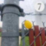Easter Egg Hunt #7.jpg