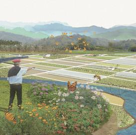 農業生態地景–授粉昆蟲棲地營造