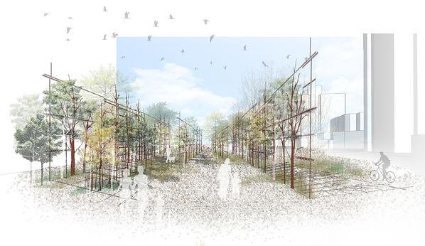 1樹牆.jpg