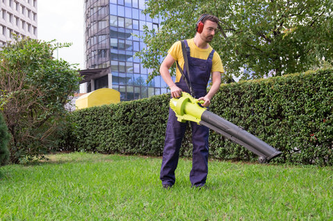 Garten + Werkzeuge