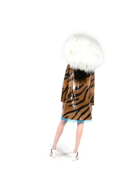 2 Tiger Back.jpg