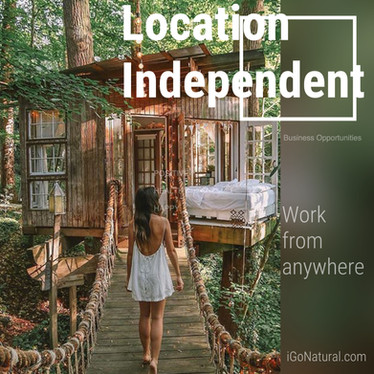 Location Independent Business Opportunit