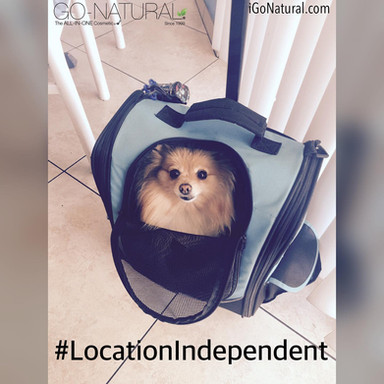 Location Independent Mobile Business Opportunities - iGoNatural