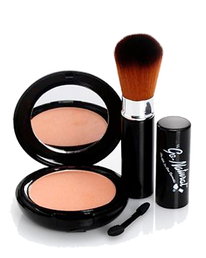 Go Natural Makeup The ALL IN ONE Cosmetic Magic Powder Makeup