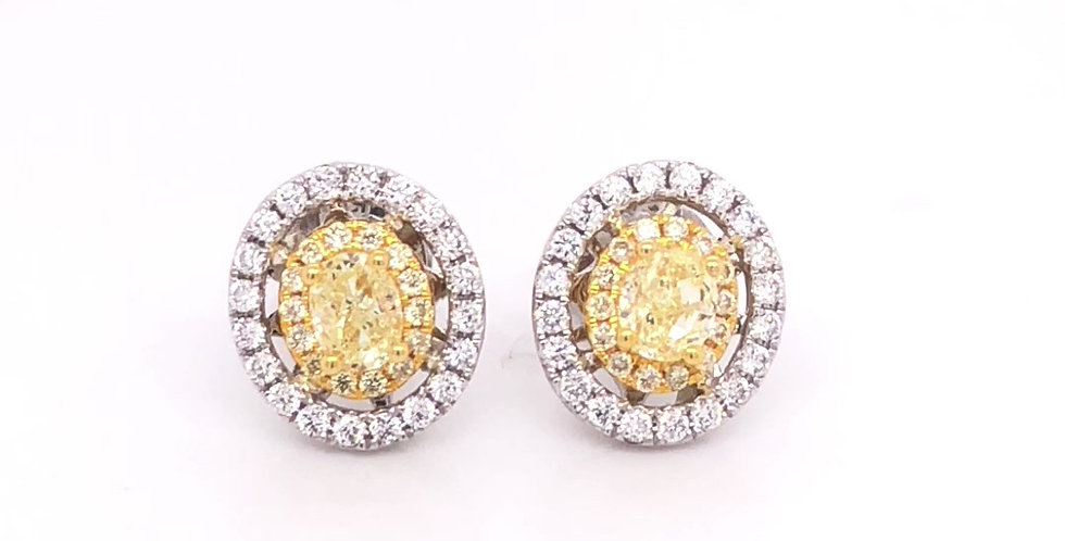 Oval Yellow Diamond Halo Stud Earrings