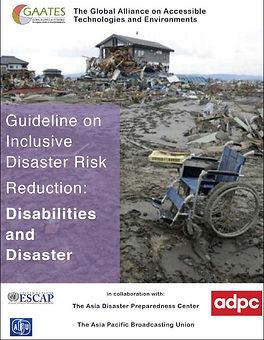 DiDRR Guideline Front Cover.jpg