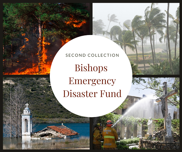 Bishops emergency disaster fund (1).png
