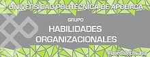 Habilidades Organizacionales.jpg