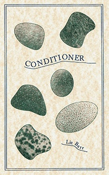 Conditioner by Liz Barr