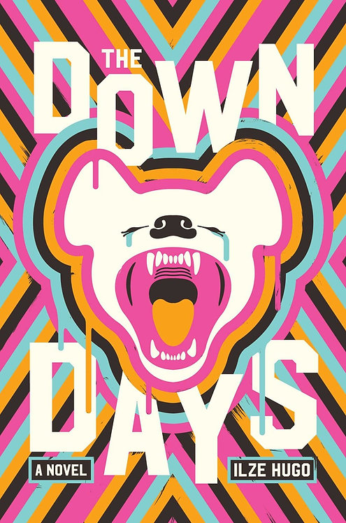 The Down Days by Ilze Hugo