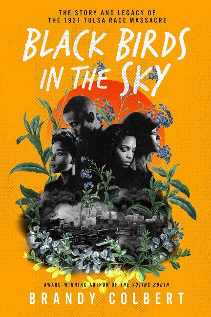 Black Birds in the Sky by Brandy Colbert