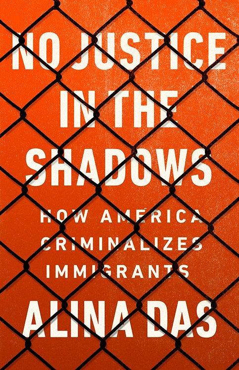 No Justice in the Shadows by Alina Das