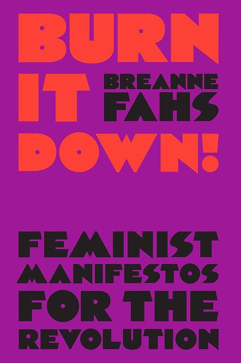 Burn It Down! by Breanne Fahs
