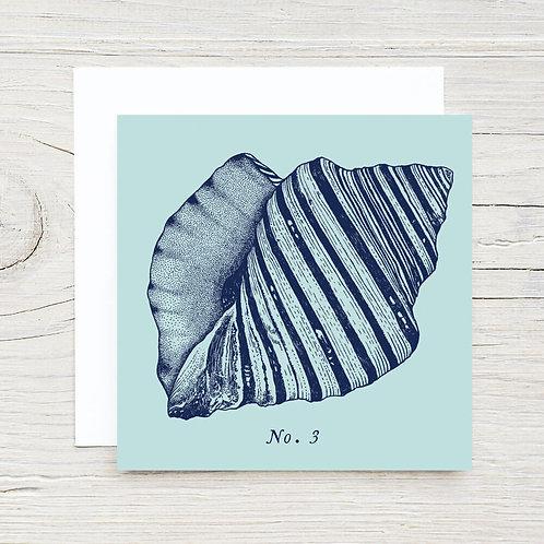 Shell No. 3 Gift Card Set (10)