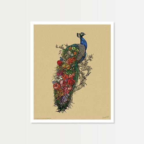 Peacock's Garden Art Print 14x17