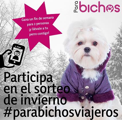 #parabichosinvierno.png