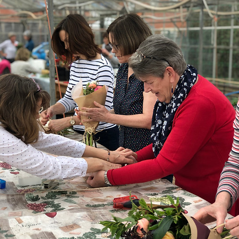 Flower Club - All about Annuals