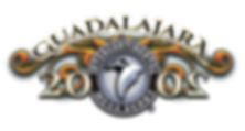 Logo-fondo-transparente--Mega-Guadalajar