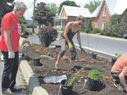 LS_Edible Gardens May 30 15 (1)_4xcol