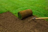 Planting new sod or rejuvenating a tired lawn