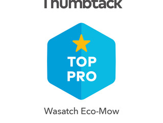 Wasatch eco-mow awarded Top Pro on Thumbtack