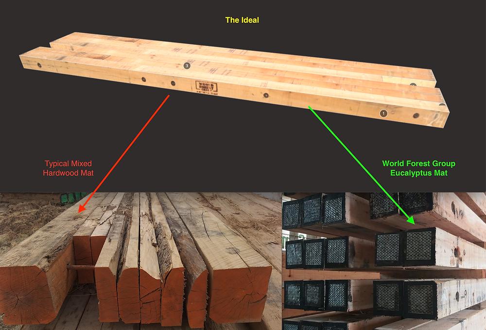 World Forest Group Eucalyptus mats are standardized. No surprises.