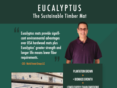 Sustainable Timber Mat