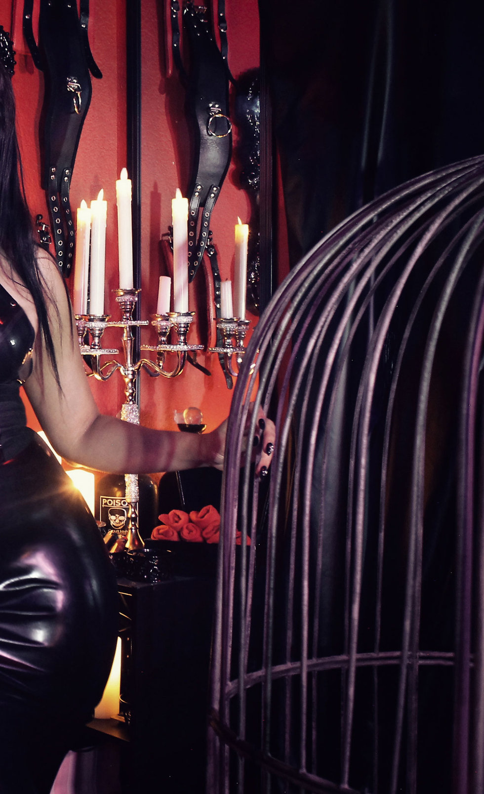 Copyrighted.  Dungeon Protocols.  How to Treat Your Mistress or Dominatrix and other questions related to meeting a prodomme in Austin