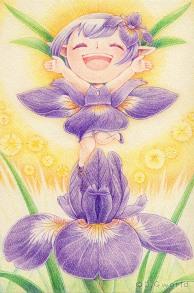 May's birth flower:  Iris - By D.G