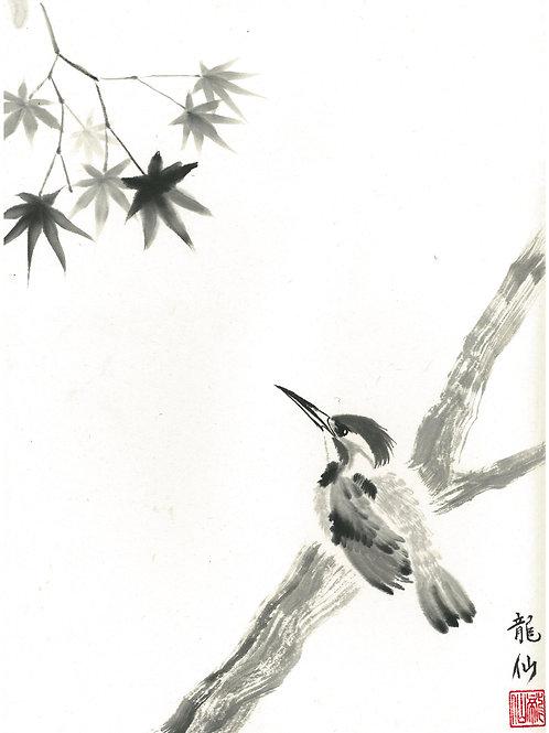 Kingfisher -BY Ryuzan Nakamura