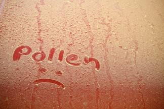 Everybody Loves Seasonal Allergies Part 2