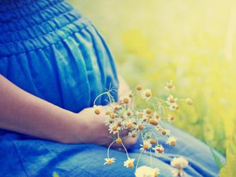 Le mystère joyeux de la sacralité de la Vie