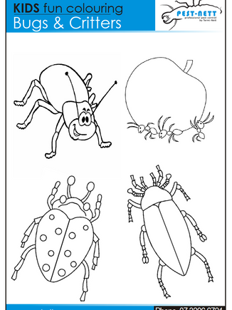 Pestnett Bug Coulouring In Sheet 4.png