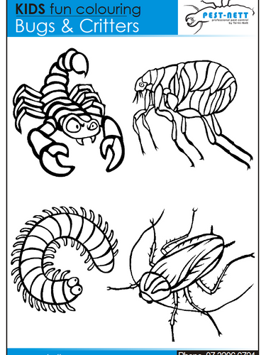 Pestnett Bug Coulouring In Sheet 5.png