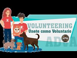 Volunteer, Únete como Voluntario, Voluntariado, Heroe sin capa