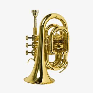 YAMADA-Y01 Trumpet2