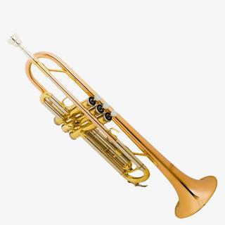 YAMADA-Y01 Trumpet