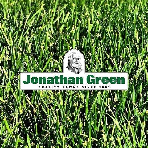 web_green-858607_1920.2.jpg