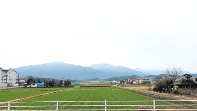 縁側から臨む風景