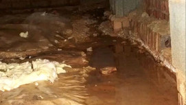 Do you have moisture problem causing damage in your crawl space?