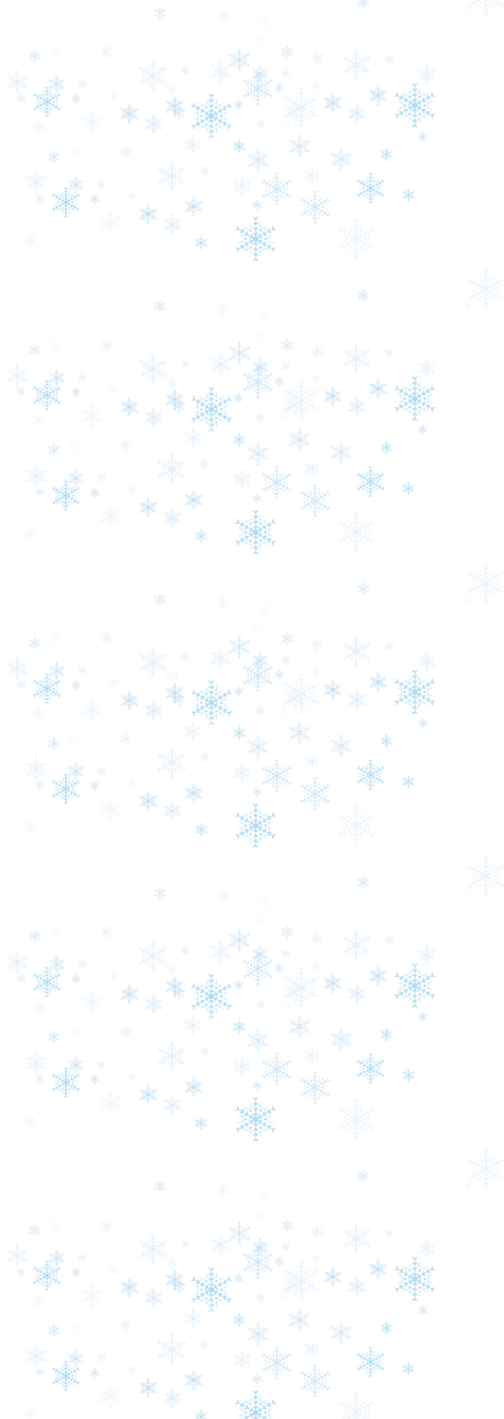 snowflake-side.png