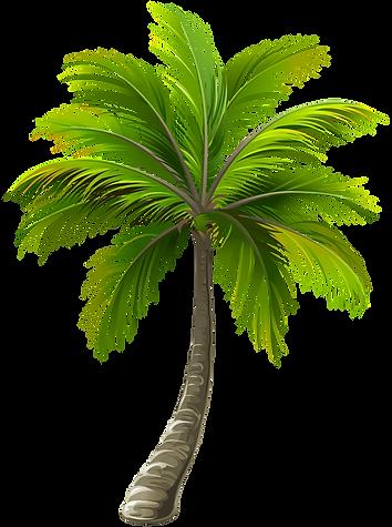 Palm - Sunny Bay Mobile Window Tinting