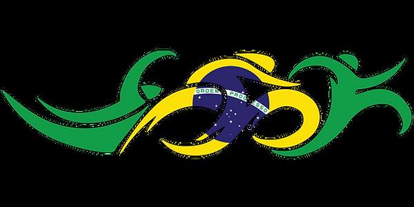Brazil Swim Bike Run Triathlon