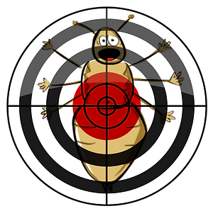 logo image (1).png