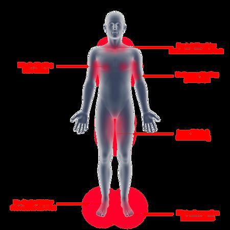 Male-Figure-(iTri)descrip.png