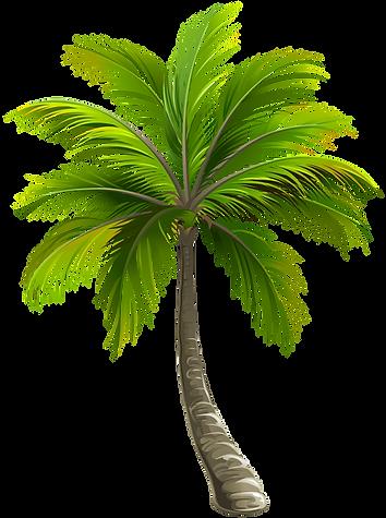 Palm Sunny Bay Mobile Window Tinting