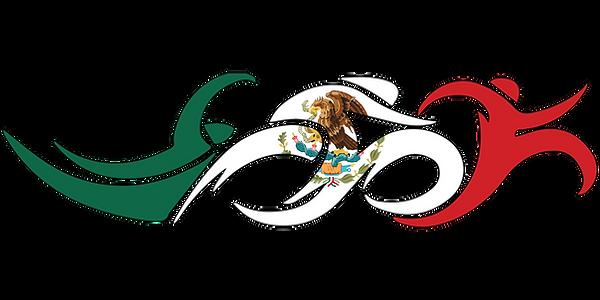 Mexico Swim Bike Run Triathlon